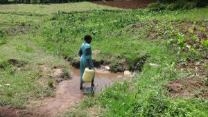 The Water Project:  Walking Through The Water To Reach The Spring