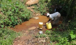 The Water Project:  Fetching Water At Peter Majoni Spring