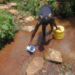 The Water Project: Shihome Community, Peter Majoni Spring -  How Water Is Drawn