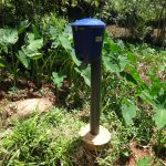The Water Project: Shihome Community, Peter Majoni Spring -  Chlorine Dispenser At The Water Point