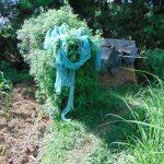The Water Project: Indulusia Community, Yakobo Spring -  Bathing Shelter