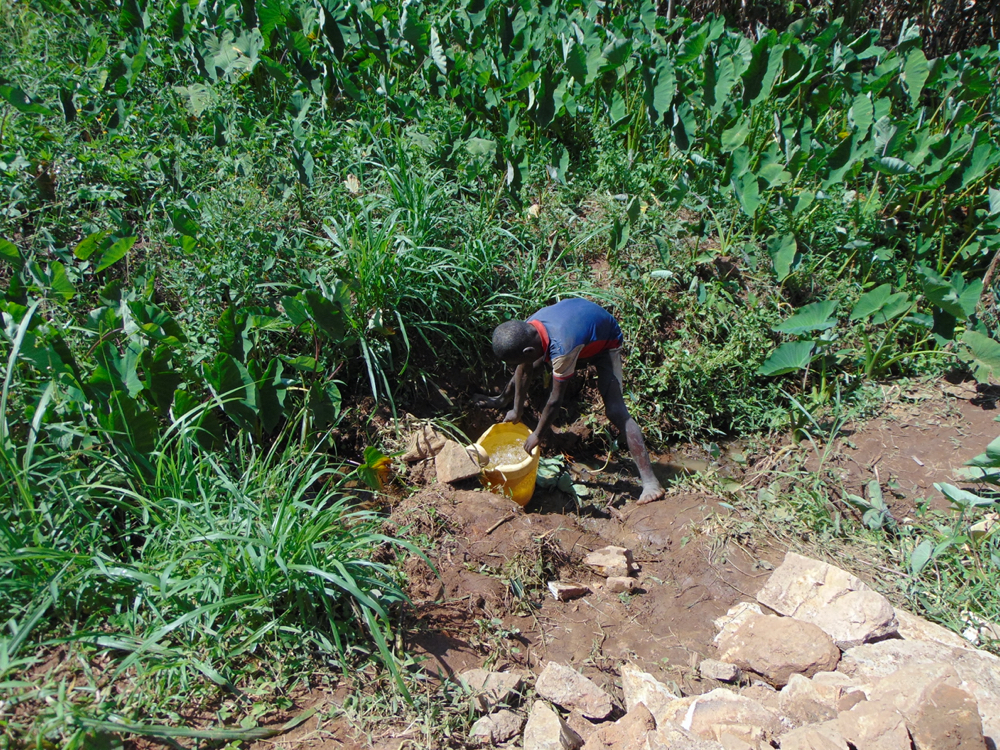 The Water Project : kenya20192-collecting-water-from-the-spring-37