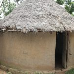 The Water Project: Shitavita Community, Patrick Burudi Spring -  Calf House