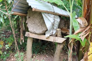 The Water Project:  Traditional Beehive