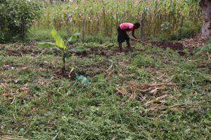 The Water Project:  Weeding The Farm