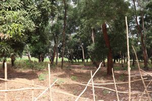 The Water Project:  School Surronding Area