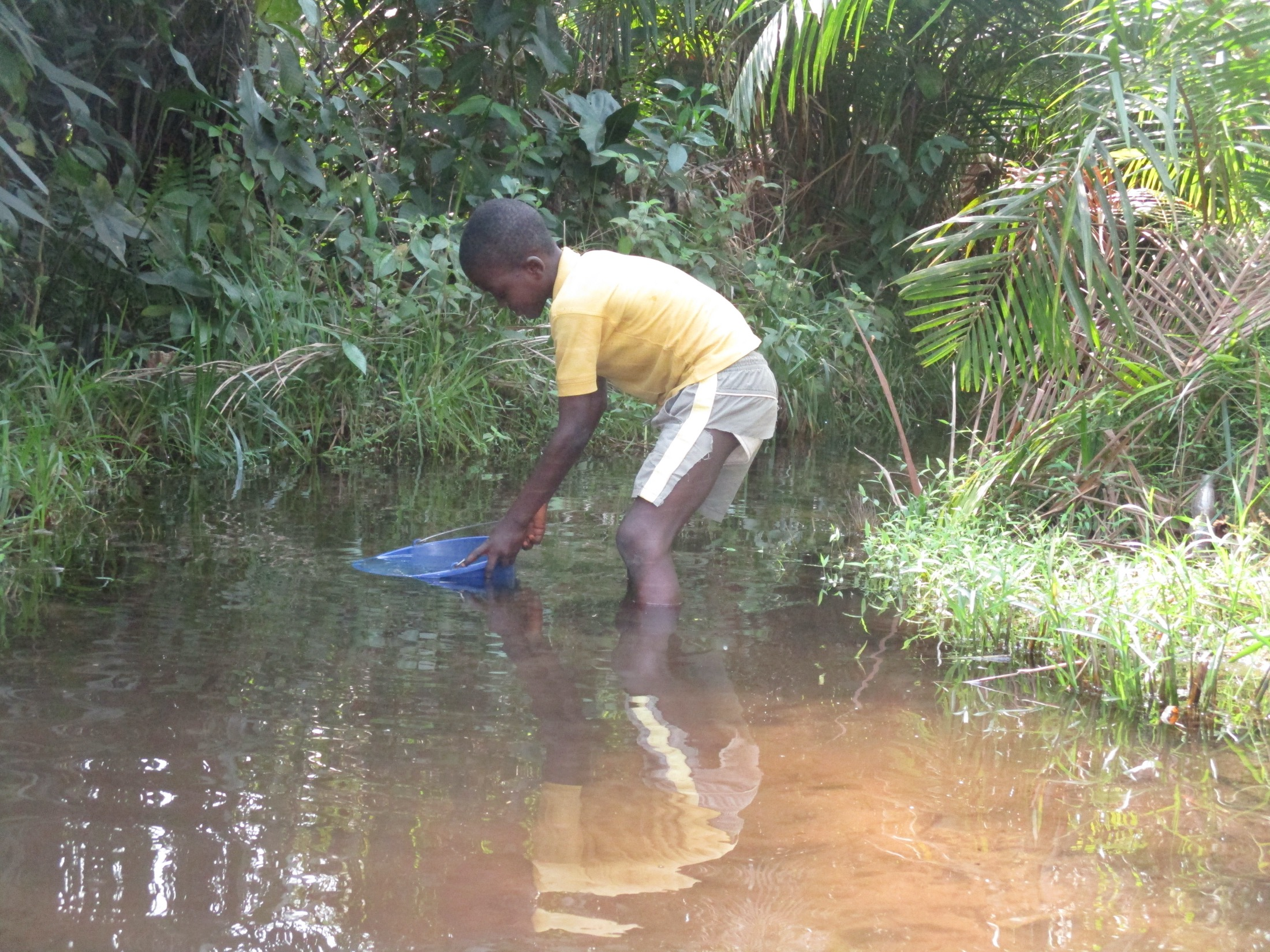 The Water Project : sierraleone20434-collecting-water-1