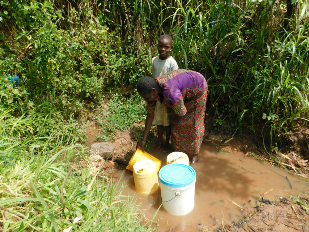 The Water Project : kenya20011-collecting-water-from-murutu-spring-4