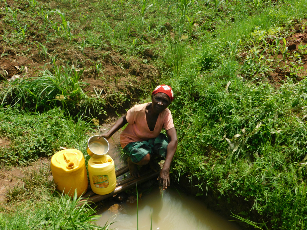 The Water Project : kenya20014-collecting-water-from-wambani-spring-2