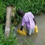 The Water Project: Maraba Community, Nambwaya Spring -  Collecting Water From Nambwaya Spring