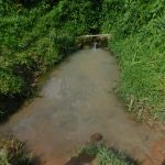 The Water Project: Maraba Community, Nambwaya Spring -  Current Situation Of Nambwaya Spring