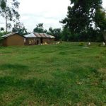 The Water Project: Maraba Community, Nambwaya Spring -  Home Compound