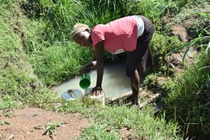 The Water Project:  Collecting Water From Muluinga Spring