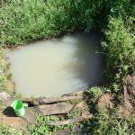 The Water Project: Emusaka Community, Muluinga Spring -  Current Situation Of Muluinga Spring