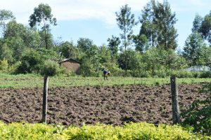 The Water Project:  Farming Is A Major Activity