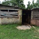 The Water Project: Bukalama Community, Wanzetse Spring -  Animal Pen