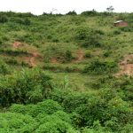 The Water Project: Bukalama Community, Wanzetse Spring -  Landscape Around Wanzetse Spring