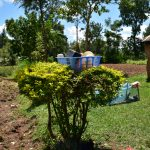 The Water Project: Bukalama Community, Wanzetse Spring -  Live Bush And Bin As