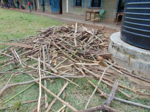The Water Project:  Firewood For School Cooking