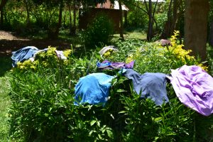 The Water Project:  Clothes Drying On Bushes