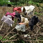 The Water Project: Shianda Township Community, Olingo Spring -  Clothes Drying On Firewood