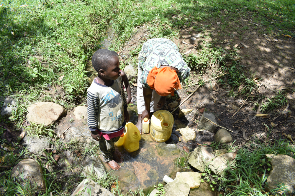 The Water Project : kenya20021-collecting-water-from-olindo-spring-4