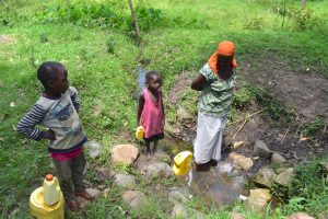 The Water Project:  Current Situation Of Olingo Spring