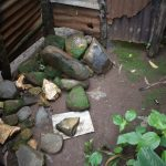 The Water Project: Maraba Community, Shisia Spring -  Bathing Shelter Stone Floor