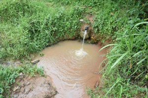 The Water Project:  Current Situation Of Shisia Spring