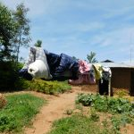 The Water Project: Musango Commnuity, Wabuti Spring -  Clothesline