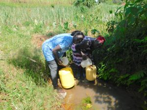 The Water Project:  Collecting Water From Wabuti Spring