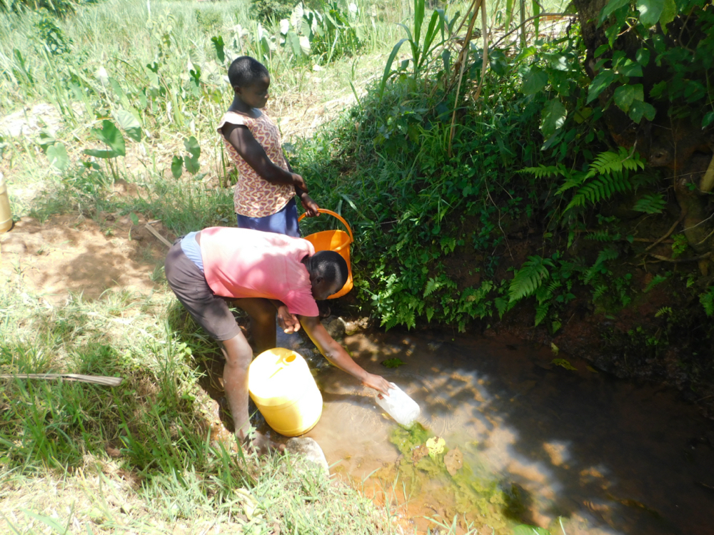 The Water Project : kenya20029-collecting-water-from-wabuti-spring-4