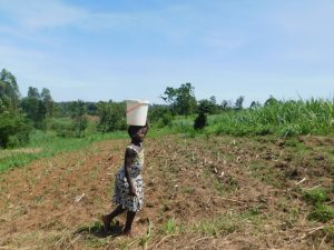 The Water Project:  Taking Water Home From Wabuti Spring