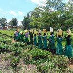KG Jeptorol Primary School Project Underway!