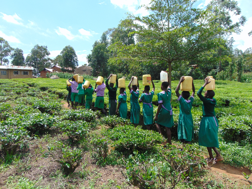 The Water Project : kenya20155-students-carrying-water-7