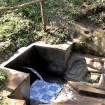 The Water Project: Mahira Community, Wora Spring -  Clean Water Flows From Wora Spring