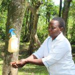 The Water Project: Litinye Community, Shivina Spring -  Trainer Betty Demonstrates Handwashing