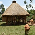 The Water Project: Imbiakalo Community, Askari Spring -  New Hut In Construction Stage