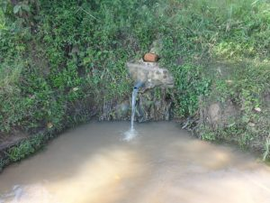 The Water Project:  Mukalama Spring