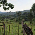 The Water Project: Makhwabuyu Community, Sayia Spring -  Landscape
