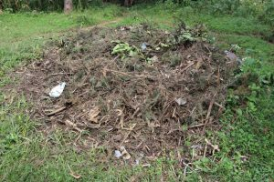 The Water Project:  Compost