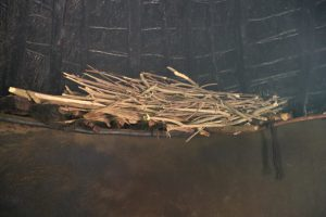 The Water Project:  Drying Firewood In The Kitchen