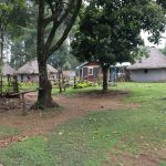 The Water Project: Makhwabuyu Community, Sayia Spring -  Homestead