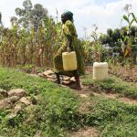 The Water Project: Mukhuyu Community, Gideon Kakai Chelagat Spring -  Carrying Water On A Steep Hill