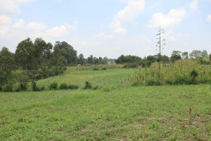 The Water Project:  Community Lands