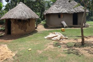 The Water Project:  Maize Store Rooms