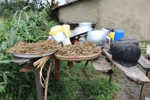 The Water Project:  Millet Sundrying At The Dishrack