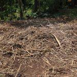 The Water Project: Mukhonje B Community, Peter Yakhama Spring -  Garbage Disposal Area