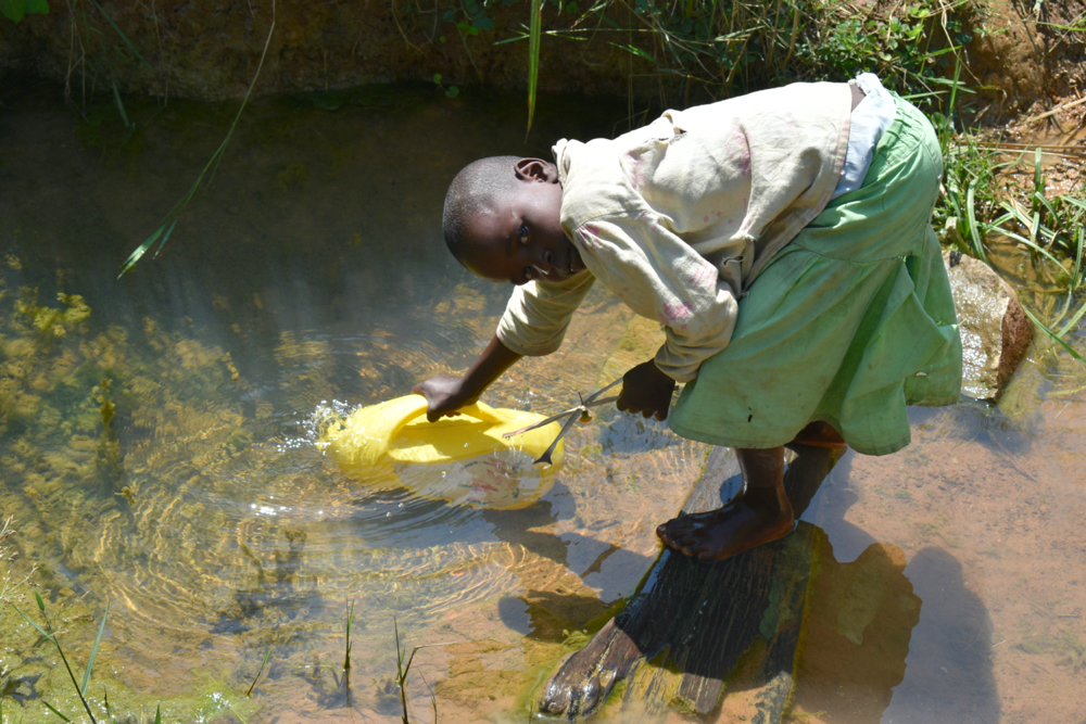 The Water Project : kenya20229-collecting-water