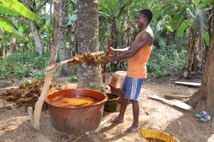 The Water Project:  Young Man Processing Palm Oil